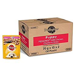 6 Best Dog Food in India 2020 | Dog Foods for Adult & Puppy