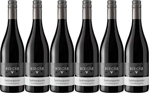 Rieger Spätburgunder Rotwein im Holzfass gereift 2017 Trocken Ecovin Bio (6 x 0.75 l)