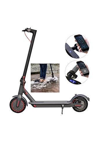 E365 Electric Scooter Adult 350W Motor, 15.5MPH Speed Max, 36V 10.4AH battery, Lightweight and...