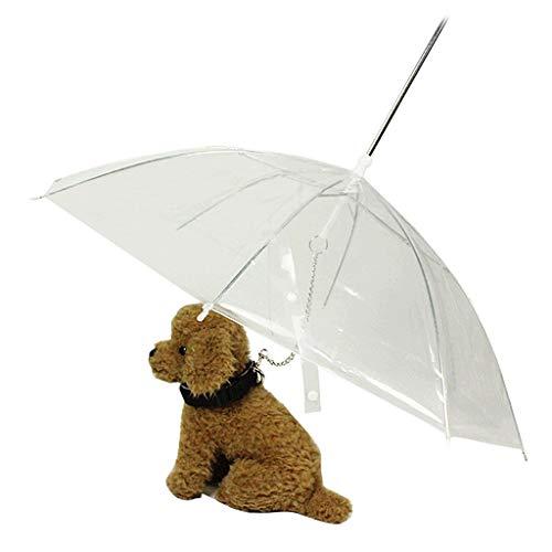Tragbarer, transparenter Regenschirm für kleine Hunde und Katzen mit Kette, hält bei Regen trocken