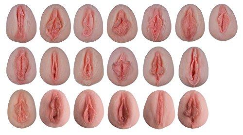 Vulva-Abdrücke mit vergleichender Anatomie L222