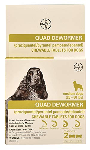 Bayer Quad Chewable dewormer Tablets