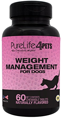 Weight Management Supplement for Dogs –  60 natural chews tablets, with L-Carnitine, Garcinia Cambogia Extract, Green Tea Extract and Chromium Polynicotinate – For Overweight dogs - support the normal burning of fat – supports a healthy Appetite -  Made in USA