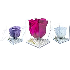single real long lasting rose (preserved rose) – plastic cube (fuchsia) silk flower arrangements