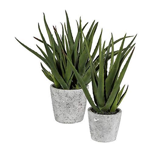 Fuchs seit 1895 Aloe Vera Kunstpflanze 40 cm im Zementtopf