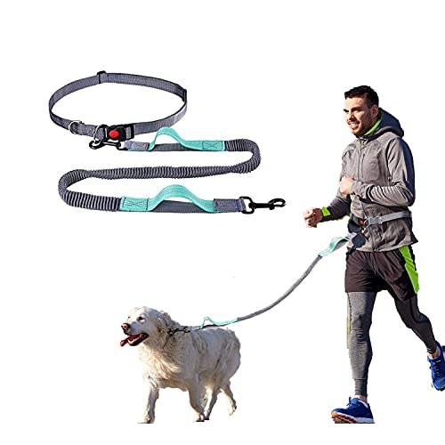 YIHATA Hands Free Dog Leash, with Adjustable Waist Belt and Reflective Stitching, Dual Padded Handles and Durable Bungee for Medium to Small Dogs (Lemon Green)
