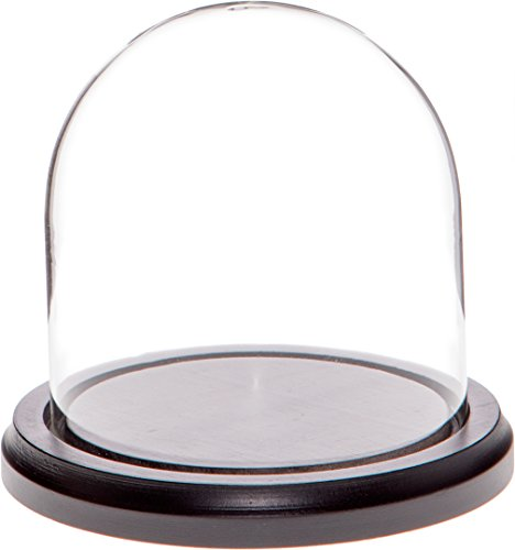 Plymor - Campana de cristal (base de madera negra)