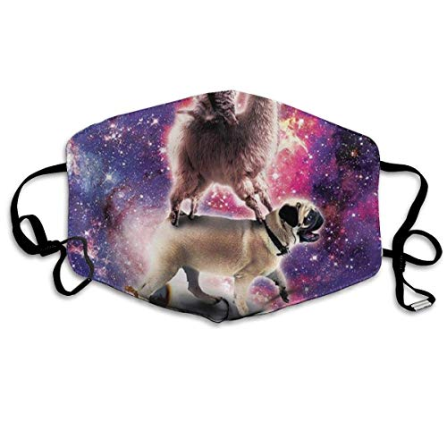 Anti-Dust Scarf,Regenbogen Galaxy Space Cat Lama Reiten Mops Mundschutz, Sicherheit Winddichter Mund Schal Für Unisex Motorrad,18x11cm
