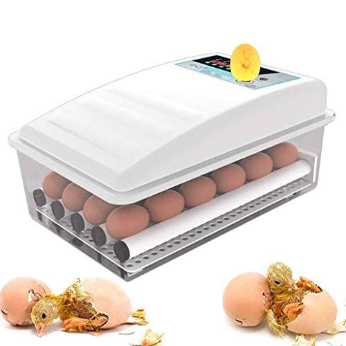 WISKEO Beleuchtung Ei Inkubator, Brutmaschine Temperaturregulierung, Brutschrank Automatische Wendung Eier, Brutkasten Brutapparat Flächenbrüter, Ausbrüten Hühner Ente Gänseeier 9 Eier