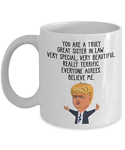 N\A .Patience - Ideas Divertidas de Regalos de Donald Trump para la cuñada para el día de Acción de Gracias cuñada para el día de Navidad - Taza de café Divertida para cuñada Taza d