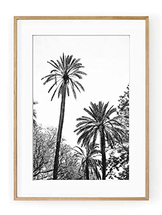 Palm Trees in Black and White, Black Satin Aluminium Frame, with Mount, Multicolored, 50x70