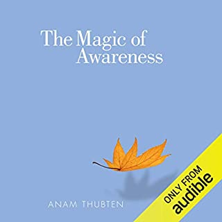 The Magic of Awareness audiobook cover art