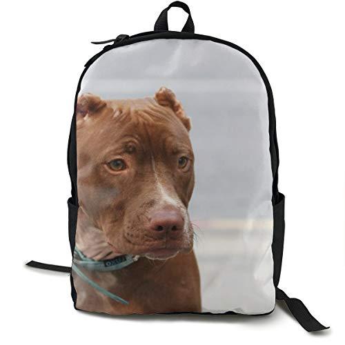 American Pitbull Maulkorb Leine Hund Halsband Schulrucksack Schulrucksack Büchertasche Reise Laptop Rucksack Casual Daypack für Kinder Studenten Erwachsene