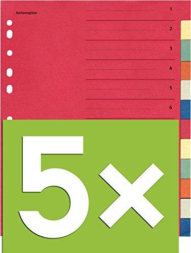 Falken Karton-Register für DIN A4 24 x 29,7 cm volle Höhe mit Organisationsdruck (12-teilig | 5er Pack)