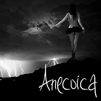 Anecoica