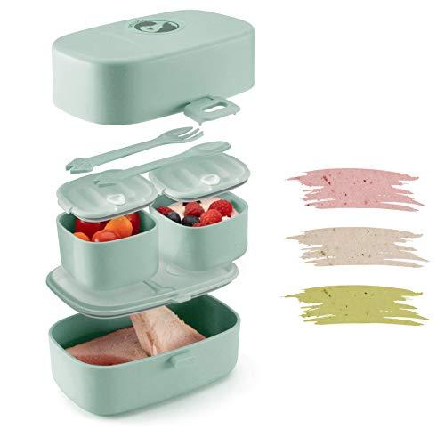 Evolico ♻ Nachhaltige Lunchbox für Kinder - Inkl. eBook mit süßen Rezeptideen - Brotdose Kinder mit 3 Fächern - Perfekt für Kindergarten und Grundschule - Auslaufsicher und Handlich (Blau)