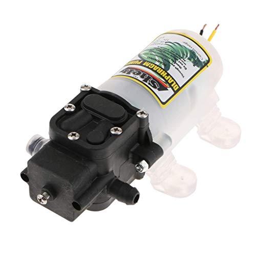 CLJ-LJ Bomba de diafragma de presión de agua dulce de 12 V DC Bomba de rociador autocebante con interruptor de presión 2 l/min 4bar