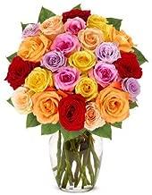 Flowers - Two Dozen Rainbow Roses (Free Vase Included)