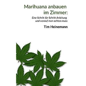 Marihuana im Zimmer anbauen: Eine Schritt für Schritt Anleitung
