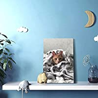 リビング絵可愛らしい猫 治愈系猫 (279)内装の絵画現代壁画装飾的な絵画壁掛け絵画(30 x 45)写真ポスター現代ポップアート油絵アートパネルウォールデコレーション絵画(リビングルーム、ダイニングルーム、ホテル、バー)