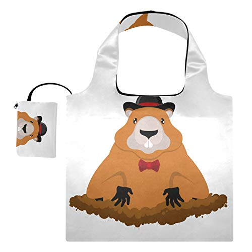 Bolsas de compras reutilizables – Marmot Día de la Marmot en sombrero de día nacional de día festivo, bolsa plegable grande Rip Stop reciclaje bolsas de tela con bolsa