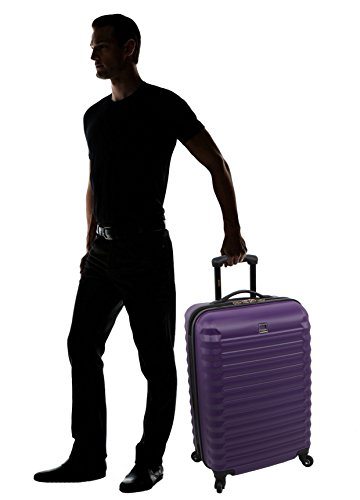 Lucas Treadlight Checked Luggage Collection - 28 Inch Scratch Resistant (ABS + PC) Hard Case Bag - Ultra Lightweight Expandable Large Suitcase With Rolling 4-Spinner Wheels (28in, Purple)