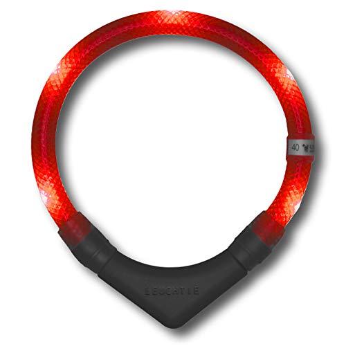 LEUCHTIE® Leuchthalsband Plus rot Größe 40 I LED Halsband für Hunde I 100 h Leuchtdauer I wasserdicht I enorm hell