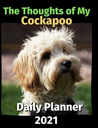The Thoughts of My Cockapoo: Daily Planner 2021