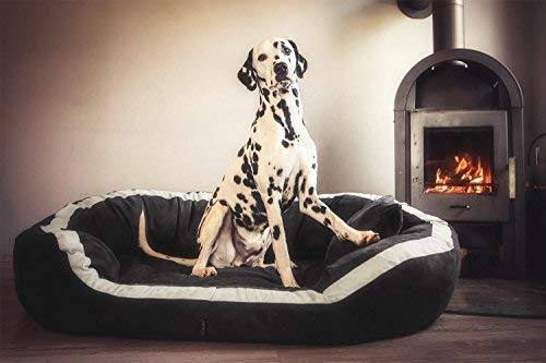 tierlando Pepper Orthopädisches Hundebett Hundesofa VISCO XL Velours Mega Dick & Weich PE5-02 Graphit 135cm XL Velours