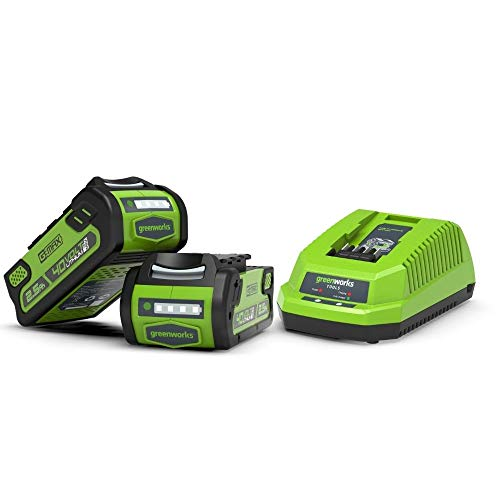 Greenworks Kit de inicio de 2.5Ah 40V batería y cargador G40B25 & G40UC (Batería de Litio-Ion 40V 2,5Ah y cargador VDE para la carga y alimentación de todos los dispositivos de Greenworks)