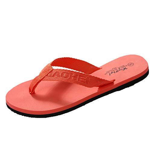 LANSKIRT Chanclas Mujer Zapatillas Casa Zapatos Chanclas Interior O Al Aire Libre Sandalias Casa Baño Sandalias Mujer Planas Verano