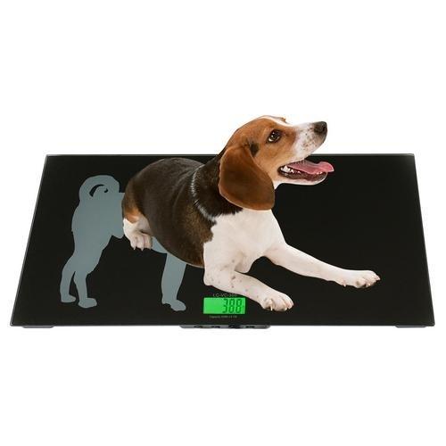 LW Measurements LC-VS 330, 300lb x 0.1lb Large Veterinary Scale