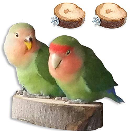 2x Sitzbrett vom Wildapfel | Handgemachtes Wellensittich Zubehör für den Vogelkäfig oder die Voliere