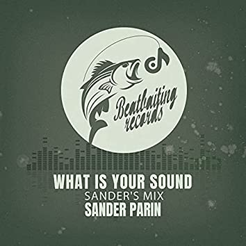What Is Your Sound (Sander's Mix)