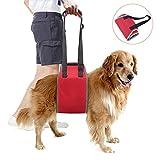 Lampop Imbracatura Cane Supporto Portatile per Cani Anziani Feriti Disabili