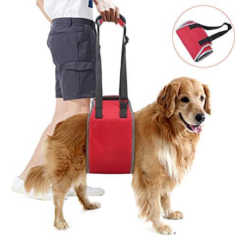 Lampop HundeshilfesmittelVerstellbarerHilfesgerät Unterstützung Hundehilfesgurt Hund Nylon Geschirrfür Alter Behinderte Kinder im Hund Oder Klein mittel und Große Hunde(S,M,L,XL)