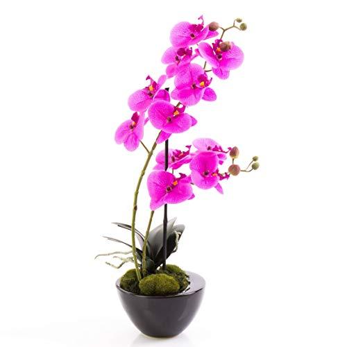 Orquídea Phalaenopsis Melina en Cuenco, 2 Ramas, Violeta, 45 cm - Planta Artificial/Flores sintéticas - artplants