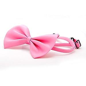 Premium Collier Nœud Papillon pour Chien, noeud papillon pour chien