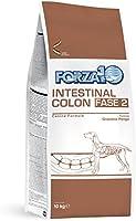 Forza10 - Intestinal Colon Fase II - Cibo Secco per Cani affetti da gastrite