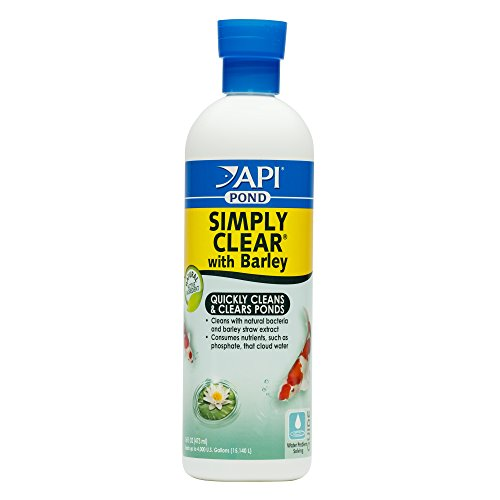 API POND SIMPLY CLEAR Pond Water Clarifier 16-Ounce Bottle