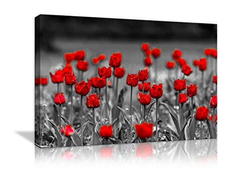 Red Poppy Abstract Flowers Wall Art Painting Canvas Black and White Red Poppy Flowers Scenery Landscape Flower Picture Wall Decor for Living Room Framed Ready to Hang
