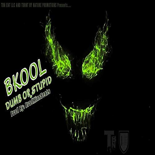 Dumb Or Stupid (feat. BKOOL) [Explicit]