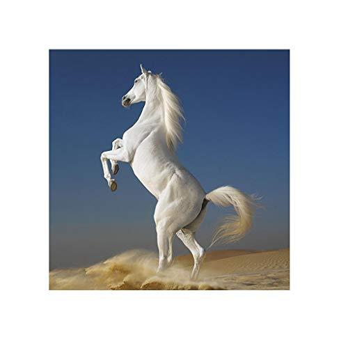 Kit complet de peinture diamant 5D DIY peinture par numéros pour adultes cheval blanc kit de broderie diamant point de croix diamonds painting kits complets décoration murale - 30 x 40 cm