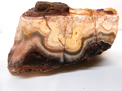 Rockhound's 1st Choice Flor de Durazno Agate (Flower of Peach) Lace Agate Rough Specimen #1 for Exhibit or Slabs & Cabs