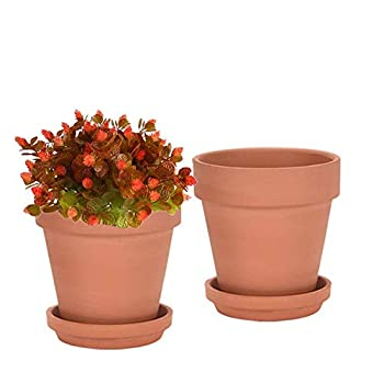 Best clay pot for plants Reviews