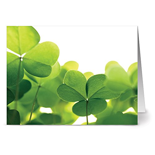 Note Card Cafe St. Patrick's Day Card with White Envelopes | 24 Pack | Clovers Design | Blank Inside, Glossy Finish | Greeting Card, Luck, Appreciation, Shamrock, Clover