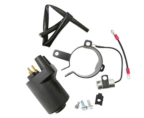 Ignition Coil Kit for Onan 541-0522 P Series, BGD, BGE, BGM, NHD, NHE & NHM - Repl.# 166-0820 HE166-0761 HE541-0522 -  YL INC., 541-0522, 166-0820 HE166-0761 HE541-0522