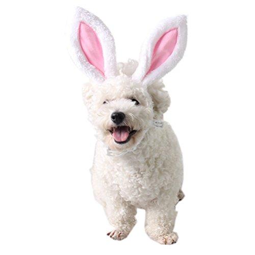 Amosfun Hunde Katze Welpen Haarschmuck Ostern Headwear Ostern Dekoration Kaninchen Stirnband Kostüm Cosplay Haarschmuck Für Party Haustier Tragen - Größe S
