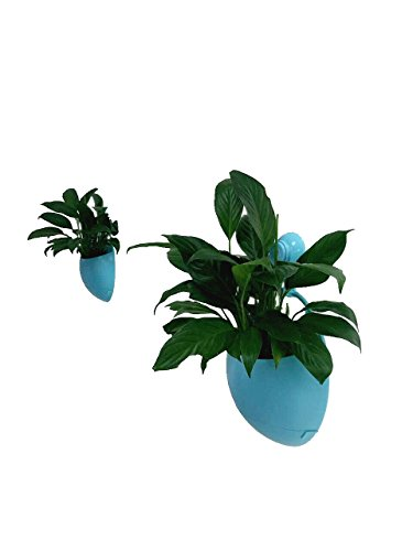 AquaMonica Selbstwässernder Mini-Blumentopf zum Aufhängen, mit abnehmbarem Vakuum-Saugnapf, Heimdekoration, Kunststoff, Blumentopf blau