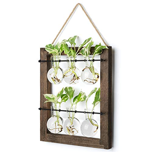 Mkono Double Layer Wall Hanging Glass Planter Propagate Station, Modern Novel Flower Bulb Vase Plant Terrarium with Retro Wooden Stand for Hydroponics Plants Home Garden Office Decor, 6 Bulb Vase